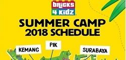 Summer Camp 2018 with Bricks 4 Kidz