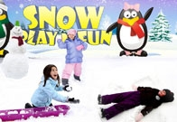 Snow Play Fun