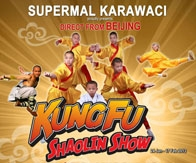Kungfu Saolin Show