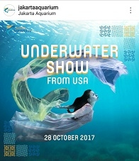 Underwater Show from USA