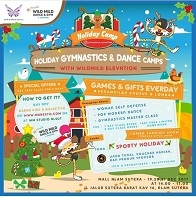 Holiday Gymnastics & Dance Camps