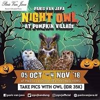 Night Owl at Paris Van Java