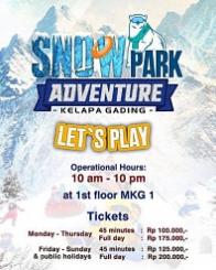Snowpark Adventure