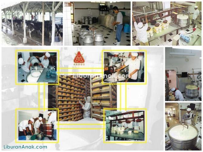 Pabrik Keju Natura Gauda
