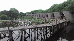 Wisata Mangrove Taman Indah Kapuk