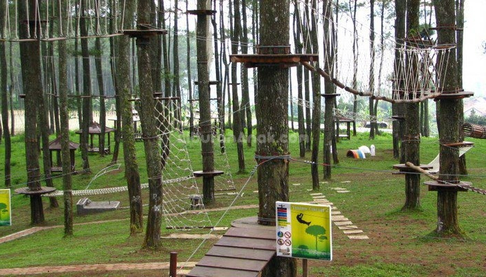 Review On Kopeng Treetop Adventure Park - Kids Holiday