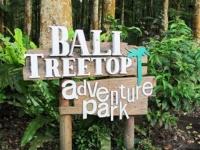Bali Tree Top