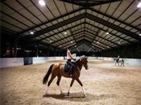 Bali Equestran Centre