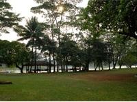 Pulau Situ Gintung