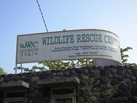Wildlife Rescue Centre Jogja