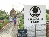 Arumandalu Farm