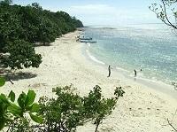 Pantai Muara Gembong