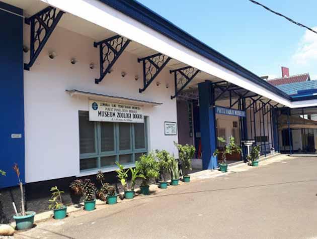 Museum Zoologi Bogor