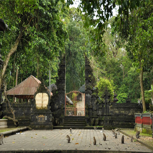 Alas Kedaton (Monkey Forest)