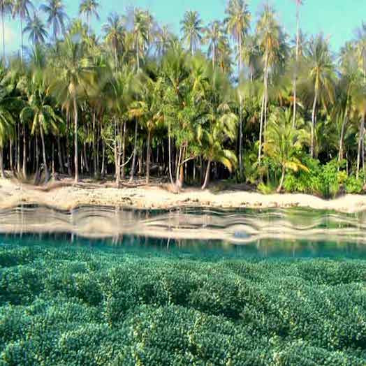 Pulau Biak