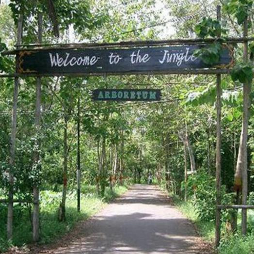 Hutan Kota Untan