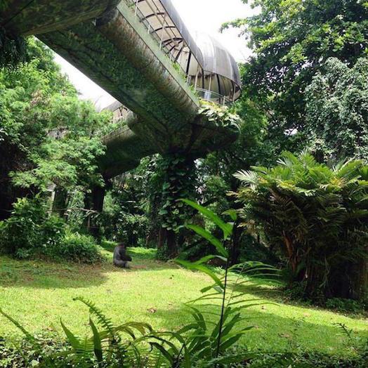 Schmutzer Primate Center
