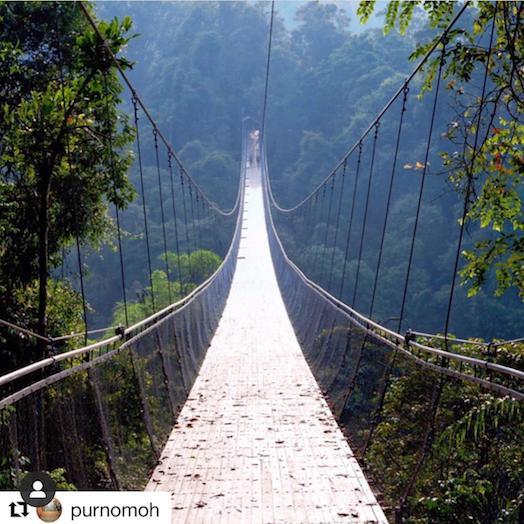 Jembatan Instagramable di Situ Gunung, Selain Panjang banget jembatanya, pemandanganya itulohhh